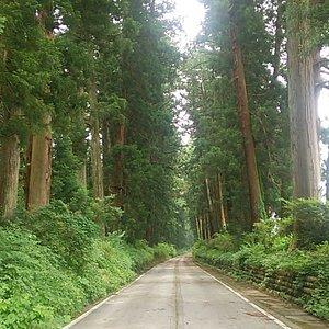 大沢インター近く 内側 旧国道