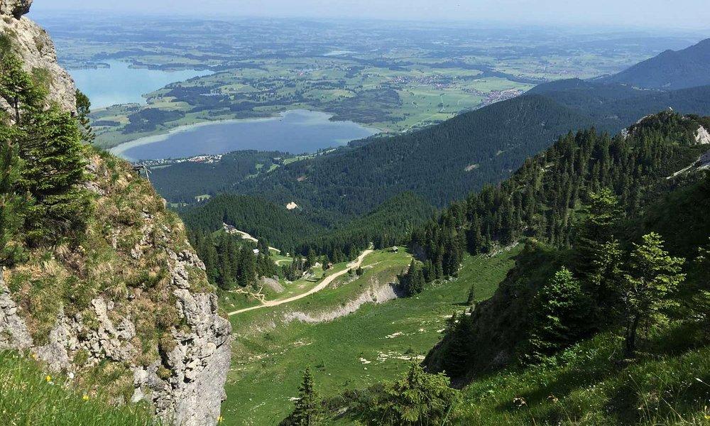 Ausblick auf Forggen- und Bannwaldsee