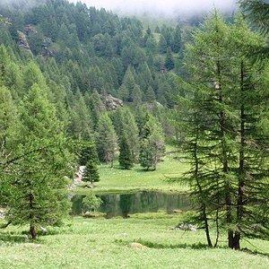 Lago Covel