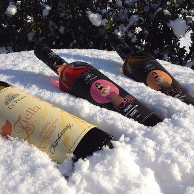 Cantine Le Pajare: Ziella Chardonnay, La Forata Rosato, La Forata Bianco.