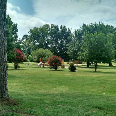 15 Acres if Grass and Trees near downtown Tulsa