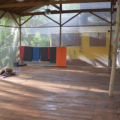 144 square meters wooden and mosquito free yoga shala
