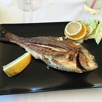 السمك هو الطبق الرئيسي في Le M restaurant