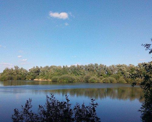 Lac présent dans ce parc
