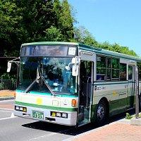 Aomori City Bu