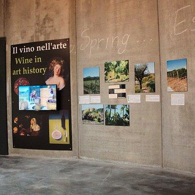 un viaggio nella storia e cultura del vino - a trip into the history and culture of wine