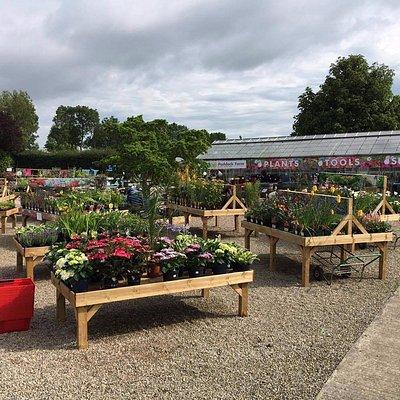 View of our garden centre