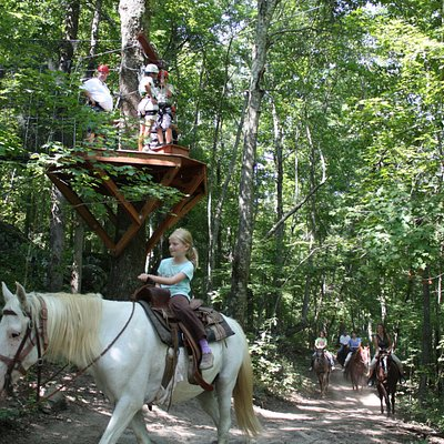 Zipline through the trees on our Canopy Tour, or enjoy the views from our Horseback Trail ride.
