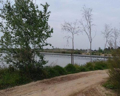 Parque del Azud de la marquesa en Cullera