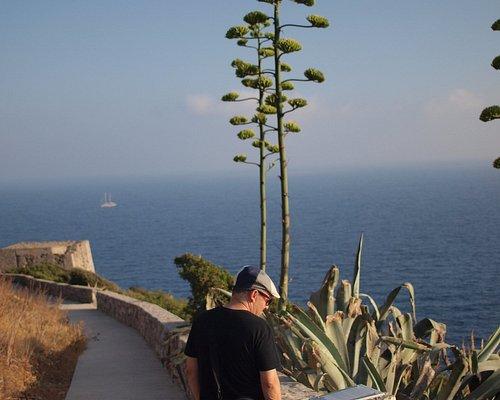 Camino a Punta Campanella, jalonado con algunos paneles informativos