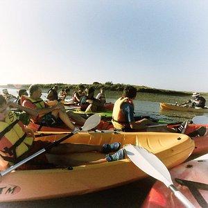 Las paradas pueden ser en la orilla o en el medio de la marisma.