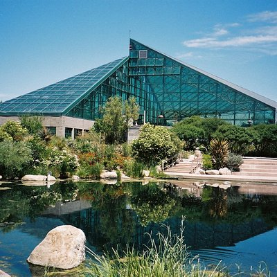 Pond and Conservatories