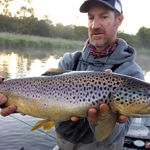 Butter belly browns are healthy this year. #templeforkoutfitters, #fishthetruth