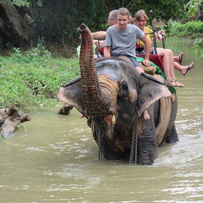 Elephant ride near Habarana