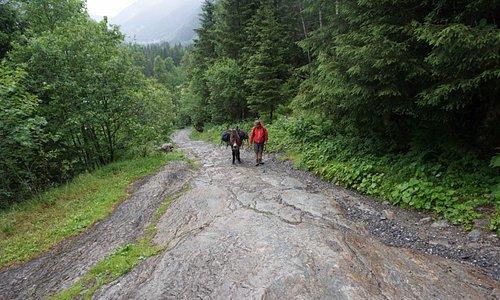 Oslo (Donkey), Duncan (Human) on the roman road to Nant Borrant Refuge, Tour du Mont Blanc 2017