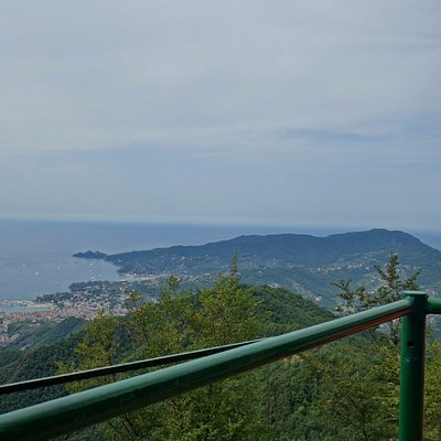 Panoramic 360 deg views from Mt Pegge.  In this one looking towards the Portofina Penisular