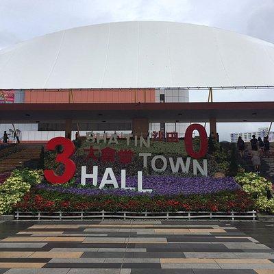 沙田大會堂30週年