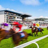Horseracing at Bath Racecourse