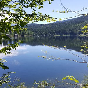 Oedensee in July