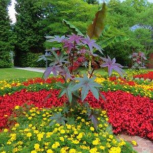 one of many beautiful gardens