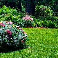 Meticulous flower gardens