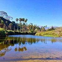Arroyo Burro County Beach Park 18