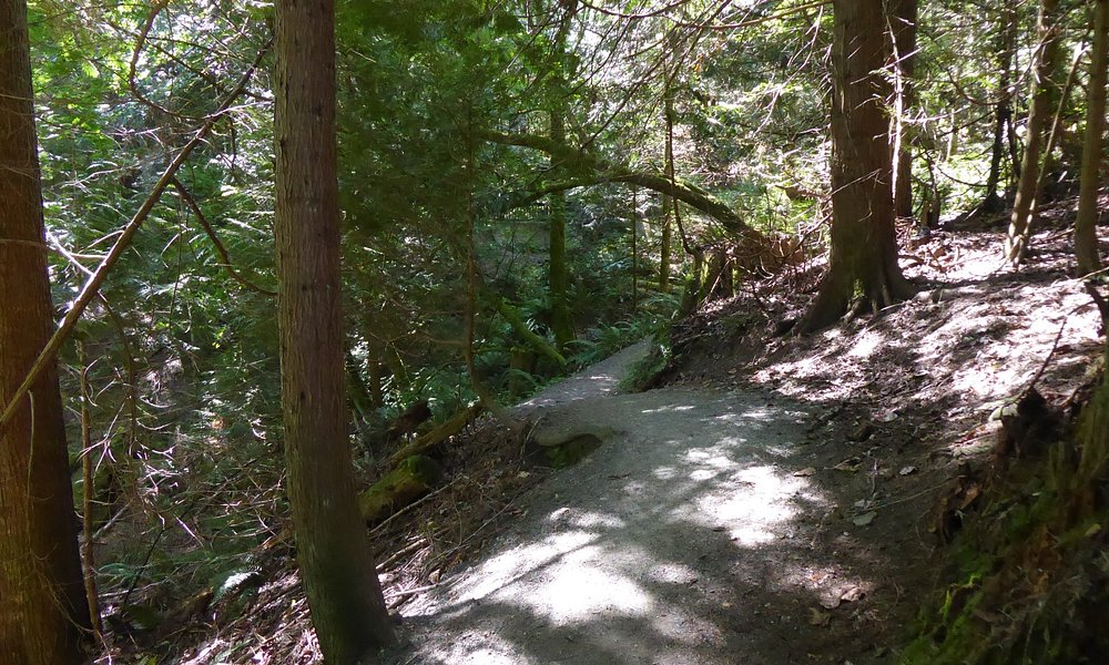 part of the trail.