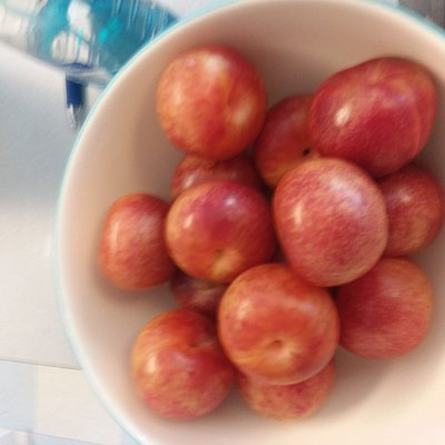 Great plums!
