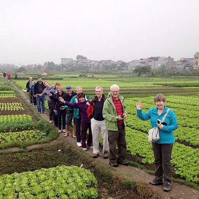 Visit local people on their vegetable business in Hoian