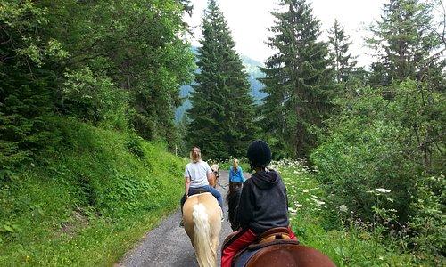 Swiss mountains near Morgins