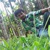 Ananth K