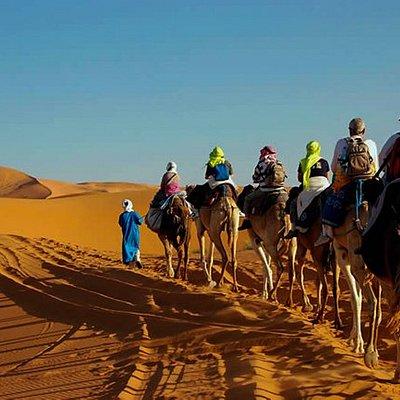 Camel trekking in sahara desert Morooc