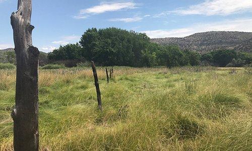 Beautiful! 'Black Hawk Trail'