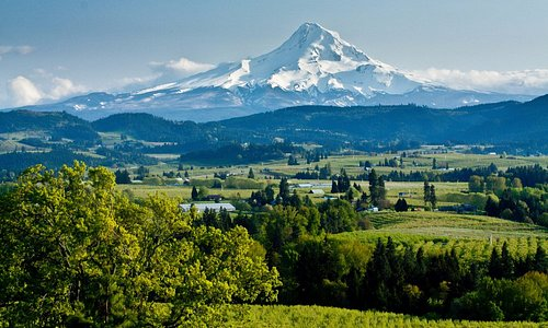 Spectacular View of Mount Hood