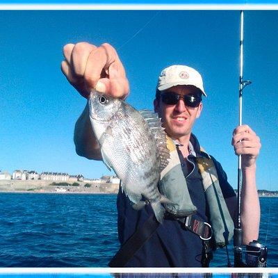 sea bream bottom fishing