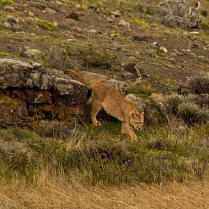 Vive una experiencia fotográfica en la Patagonia Chilena