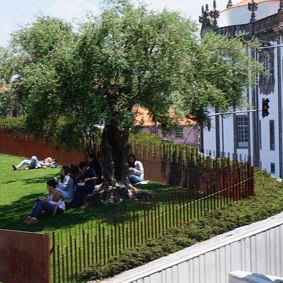 Enjoying Life in Praca de Lisboa