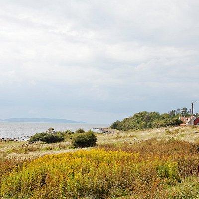 Vackra Magnarps Strandmark med utblick över Kullaberg på andra sidan havet. Foto: Anna Olsson.