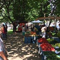 Tylák Farmers Market