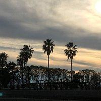 五色浜の午後