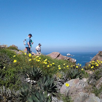 A littke hike adventure at the Bufadora area but out of the turist area.