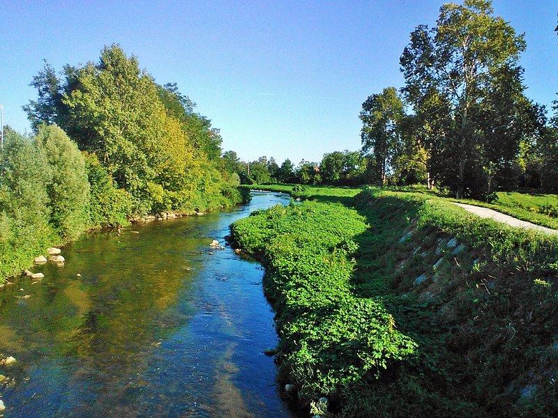 Testimonio oggi del l'antico paesaggio della regione agricola intorno all'Olona.