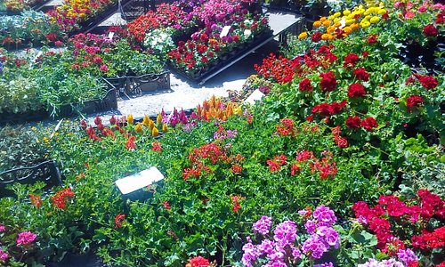 Blumengasse