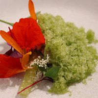 Oyster with creme fraishe, cucumber, edible flowers & radish granita