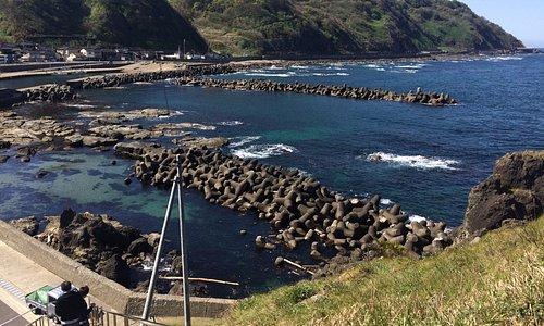 灯台の高台から海を臨む