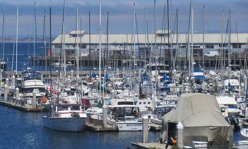 Municipal Wharf 2, Monterey, Ca