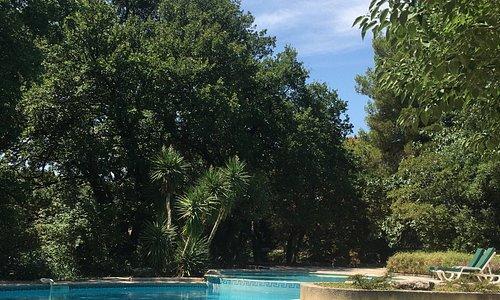 Prachtig zwembad meet veel schaduwrijke plekjes maar ook veel zon! Ideaal!