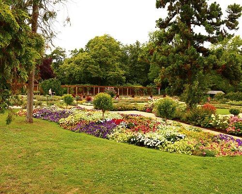 Stadt Park Mainz