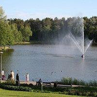 Lake Druskonis | Druskininkai, Alytus County Lithuania