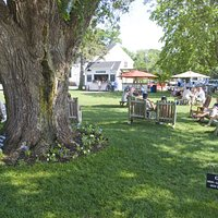 The large, shady lawn outside the vineyards is a great spot to relax and sample the wines or rum